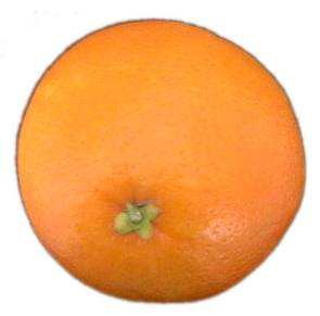 Orange-fruit-2