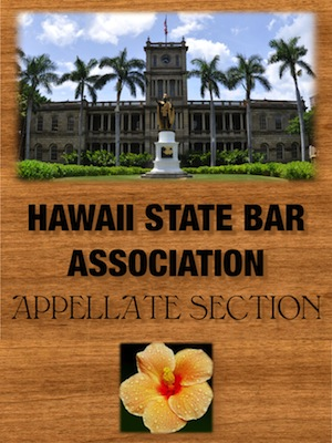 HSBAappellate