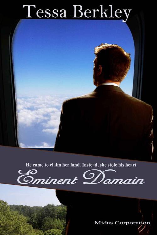 Eminentdomainromanc